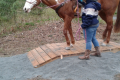 Guiding horse in-hand over the bridge