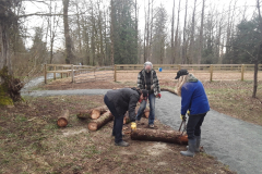 Many logs to move