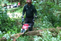Clearing logs from the trails at Allco Park