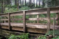 HHA 2010 project: Millionaire Creek Bridge on Maple Ridge Trail