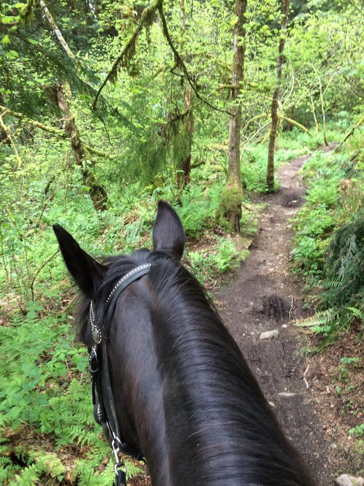 Heritage Trail: Bear Ridge Trail