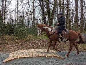 Horseman's Park Trail Obstacle - Bridge